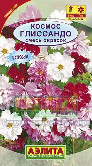 Цветы космос описание и